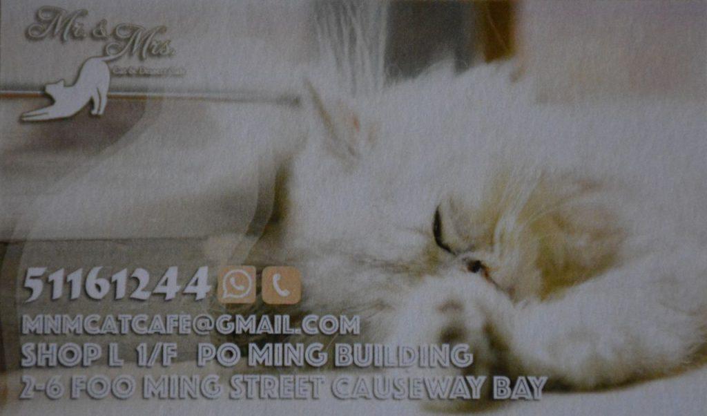 Cat Cafe Hong Kong
