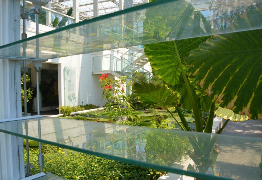 botanische tuin padova
